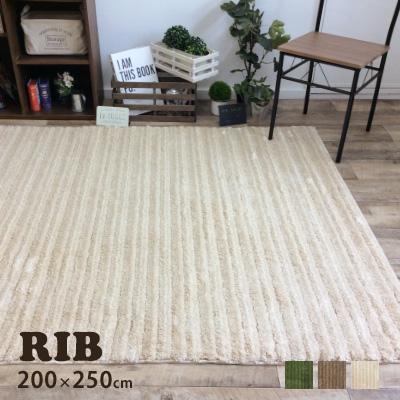 ラグ ラグマット カーペット 絨毯 おしゃれ シンプル 無地 スミノエ ウレタン 滑りにくい HOT・床暖房対応 冬 ウォームエコ Warm eco 温感加工 グリーン 北欧 neore / リブ 200×250cm