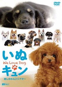 送料無料選択可 シンフォレストDVD いぬキュン 開催中 癒しのわんこシアター We BGV 卓越 DVD Love Dog