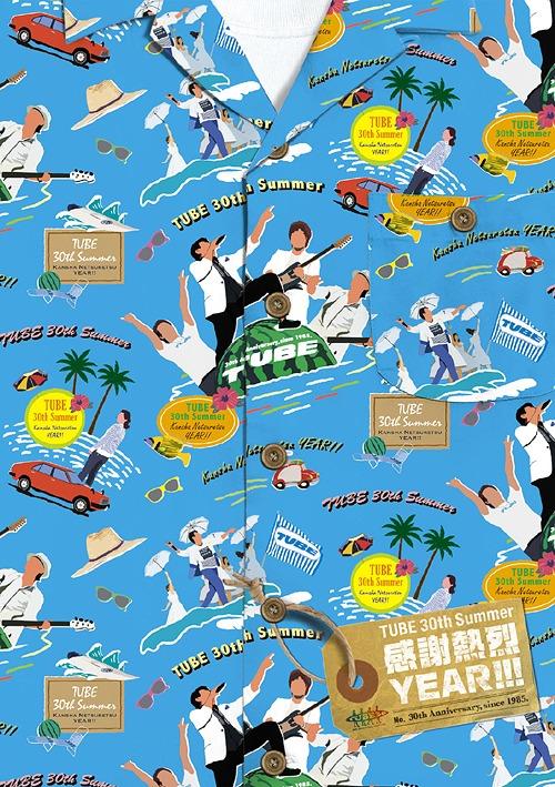 TUBE 30th Summer 感謝熱烈 YEAR!![DVD] / TUBE