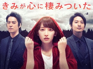 きみが心に棲みついた Blu-ray BOX[Blu-ray] / TVドラマ
