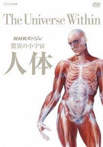 NHKスペシャル 驚異の小宇宙 人体 DVD-BOX [廉価版][DVD] / ドキュメンタリー