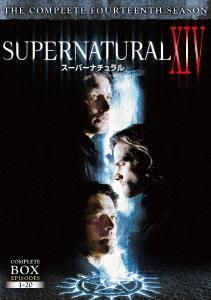 SUPERNATURAL XIV <フォーティーン・シーズン> DVD コンプリート・ボックス[DVD] / TVドラマ