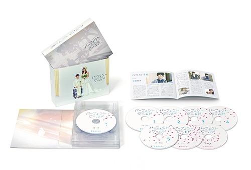 パーフェクトワールド DVD-BOX[DVD] / TVドラマ