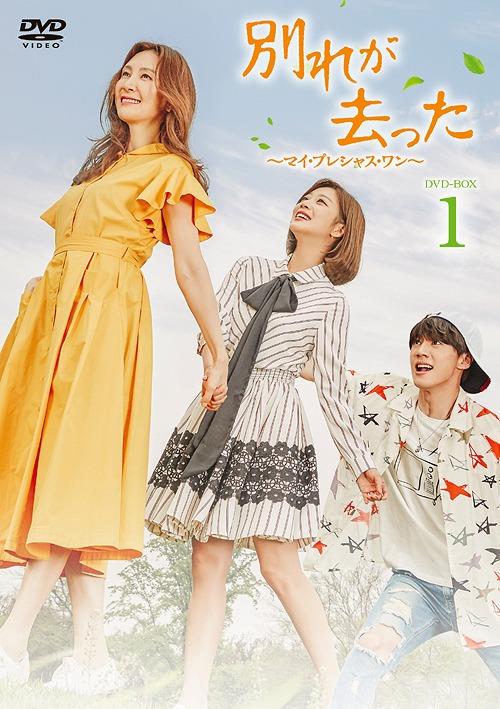 別れが去った DVD-BOX 1[DVD] / TVドラマ