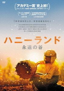 公式ショップ 送料無料選択可 ハニーランド 永遠の谷 洋画 DVD 販売実績No.1