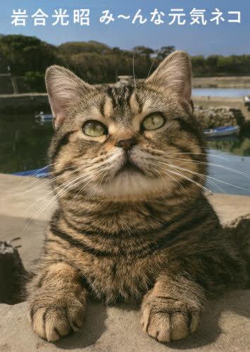 書籍のメール便同梱は2冊まで 岩合光昭み~んな元気ネコ 本 セール特価 雑誌 当店は最高な サービスを提供します ニッポンの猫写真集 著 岩合光昭 編集 猫びより編集部