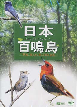 送料無料選択可 与え 日本百鳴鳥 趣味教養 商舗 映像と鳴き声で愉しむ野鳥図鑑