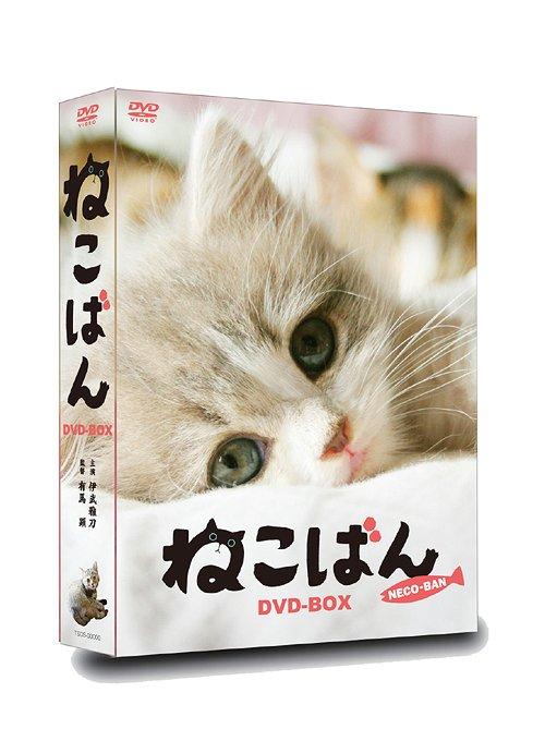 ねこばん DVD-BOX[DVD] / 邦画
