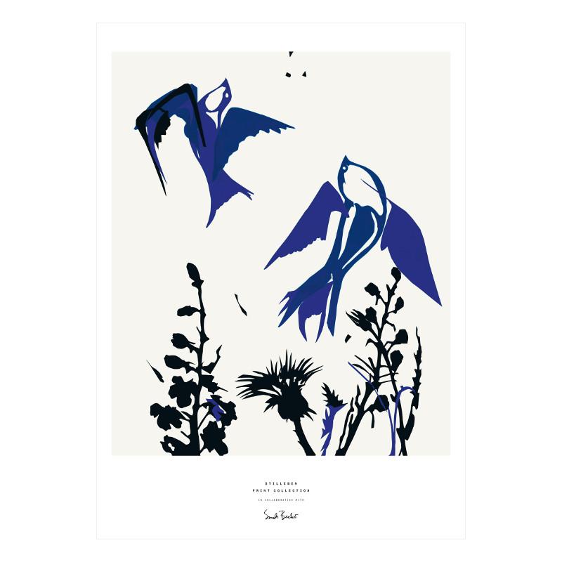 STILLEBEN 「鳥」アートプリントポスター 50x70cm 北欧 デンマーク