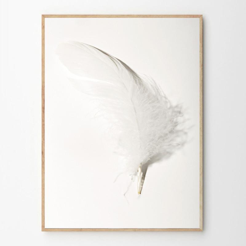 BY GARMI ココヤシ アートプリントポスター 50x70cm デンマーク 北欧