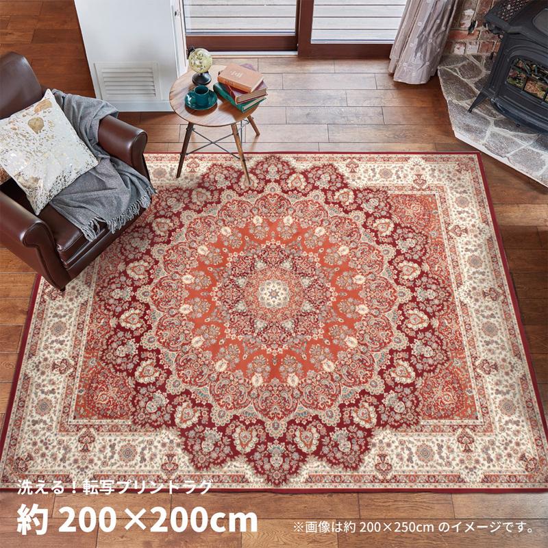 ラグマット プリシア pricia 200×200cm ラグ 絨毯 ホットカーペット 角形 正方形 秋冬 やわらか ウォッシャブル 洗える おしゃれ netc5