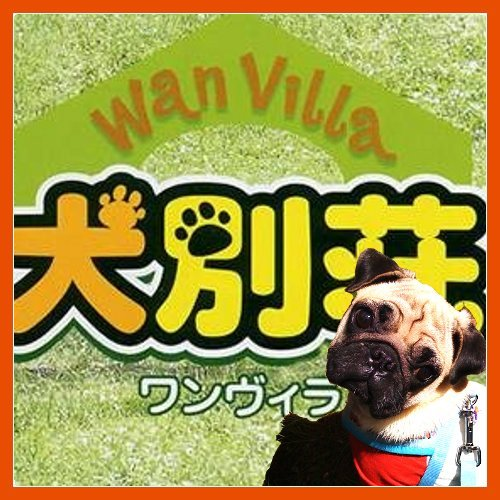 犬別荘(ワンヴィラ) WV-002【お取り寄せ商品】 サイズ: M/色: GRAY【02P03Dec16】