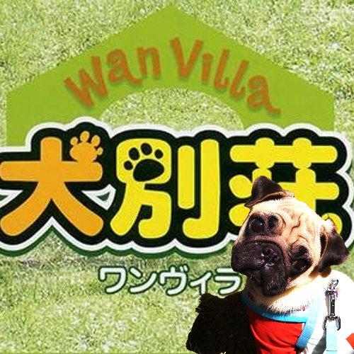 犬別荘(ワンヴィラ) WV-003【お取り寄せ商品】 サイズ: L 色: GRAY ペット・愛犬シート【02P03Dec16】