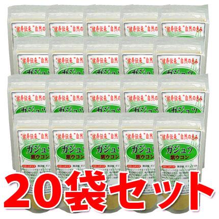 【送料無料】ガジュツ粉末 100g×20袋セット