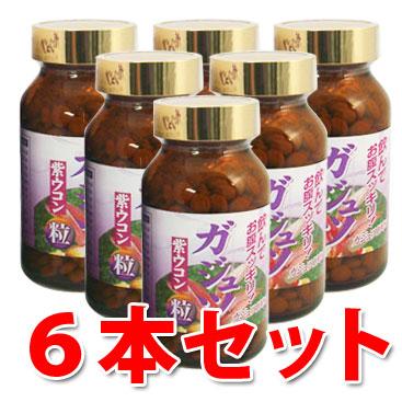 【送料無料】ガジュツ粒 100g×6本セット