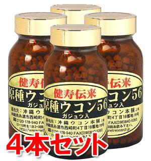 クルクミン量が従来のウコンの約10倍!ガジュツ配合。自然栽培のウコン使用。からだの中で溶けやすく、負担軽減を考えた自信作。