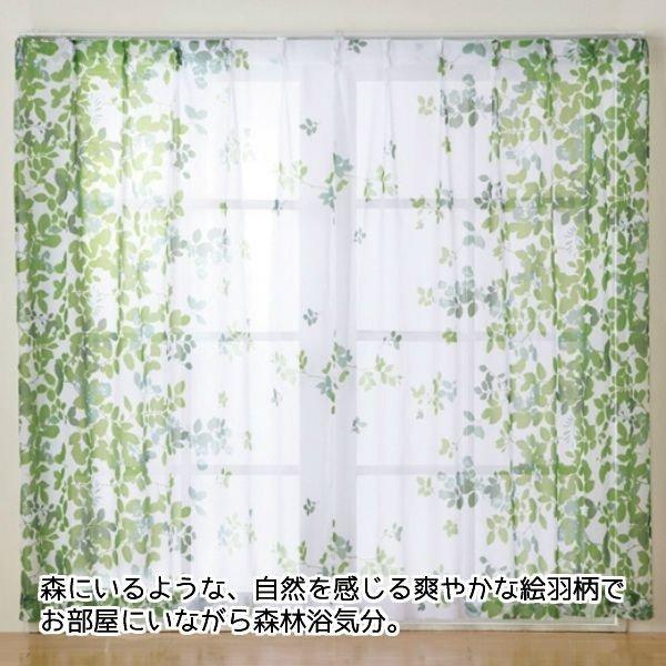 心が落ち着く ナチュラル癒やしカーテン レース カーテン エバリーフレース 2枚組 100×198cm 価格 森林 自然 ウォッシャブル 絵羽柄 葉 2020春夏新作 アジャスターフック