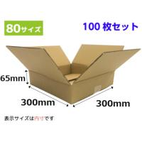 ダンボール箱(80サイズ段ボール箱) 300x300x65mm(SA6) 100枚セット 送料無料