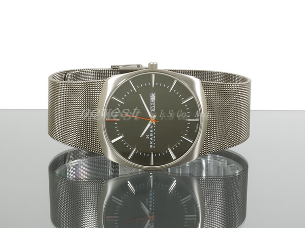 SKAGEN sukagen Performance Driven 696XLTTM灰色×银子人