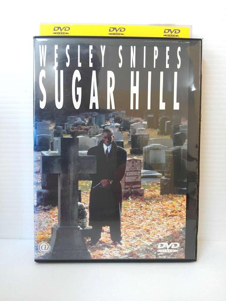 生き残った者だけに 与えられた選択 定番キャンバス ZD04531 初回限定 中古 DVD ヒル シュガー