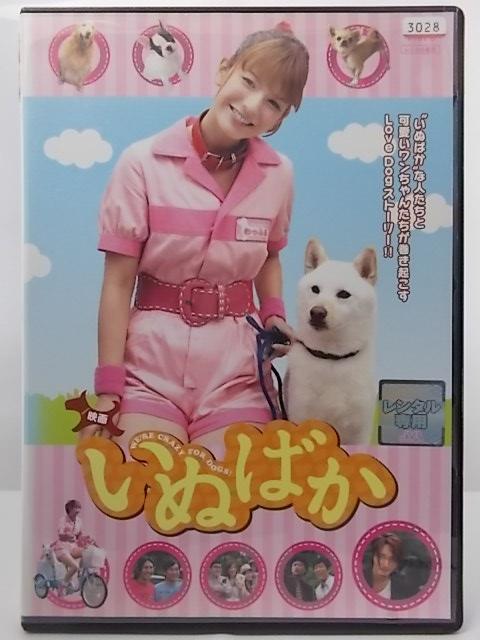 思わず抱きしめたくなるワンちゃんたちと夢の競演 ZD36465 受注生産品 往復送料無料 中古 DVD いぬばか 映画