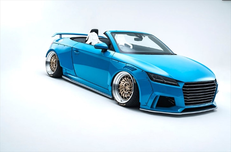 Alpil Audi TT (FVC) Rear Wing リアウイング FRP(未塗装)