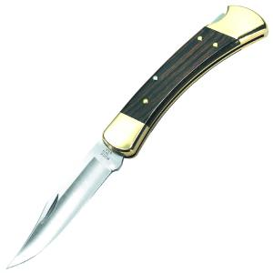 グランドセール バックナイフ【BUCK【BUCK KNIVES】 KNIVES】 フォールディングハンター 110BRS/Folding Hunter 110BRS, 内外治療院:893c788c --- supercanaltv.zonalivresh.dominiotemporario.com