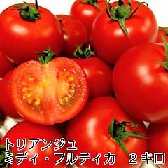 トマト ミディトマト 新鮮 生産者直送 ホワイトデー  宅配便なら全国送料無料 ミディ・フルティカ バラ(パックなし)2キロ 甘味と酸味旨みのバランスがよくフルーティな「フルティカ」です