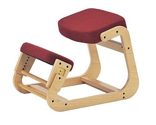 【 sled chair 1 】 SLED-1(RD) / SLED-1-RD / 4933178075128 / 株式会社 弘益