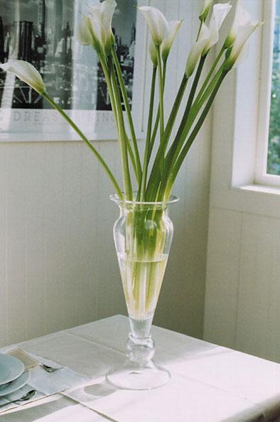 【 COVENT GARDEN / ロイヤル・クレセントベース / IY-01 】 花瓶 フラワーベース シンプル ガラス おしゃれ 花 / コベントガーデン コベント・ガーデン