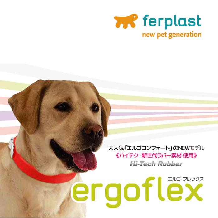 エルゴフレックス C22/42 クビワ/グリーン/ファンタジーワールド/78000723/8010690126135