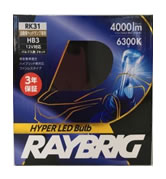 RAYBRIG レイブリック RK31 LED ヘッドランプ Hiビーム用 HB3 6300K 12V 22W