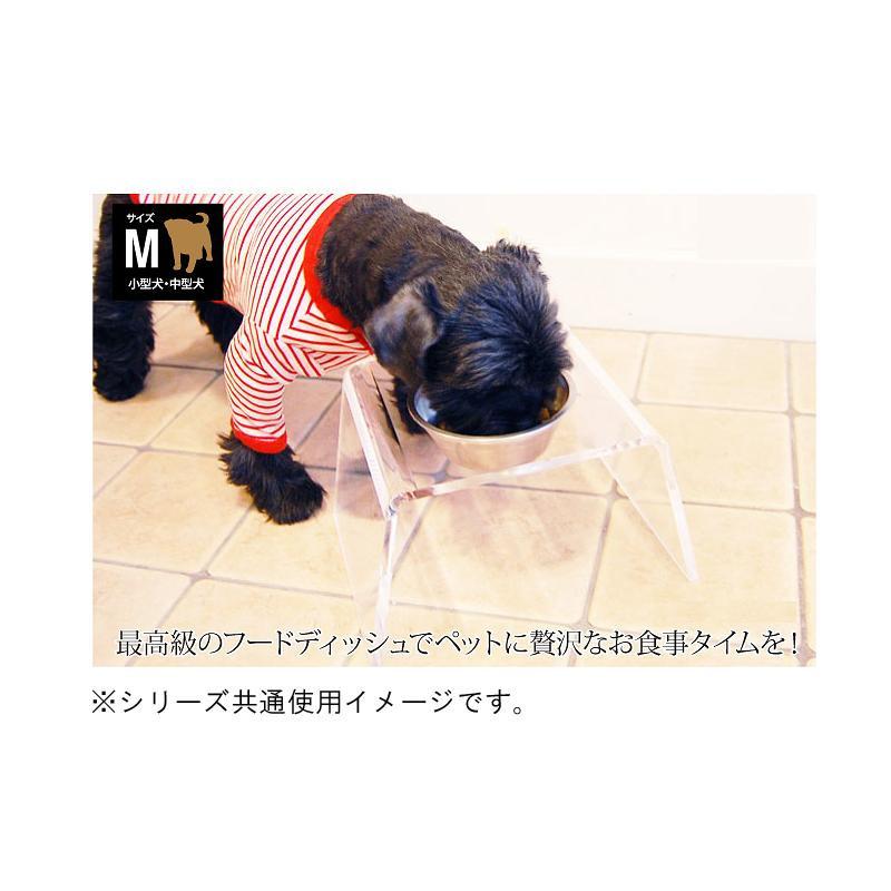●【送料無料】クリアディッシュスタンド M「他の商品と同梱不可/北海道、沖縄、離島別途送料」