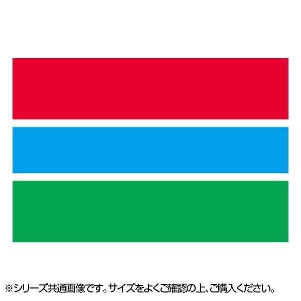 ●【送料無料】N国旗 ガンビア No.2 W1350×H900mm 22976「他の商品と同梱不可/北海道、沖縄、離島別途送料」