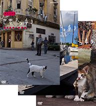 送料無料動物カメラマン 世界の人気ブランド モデル着用&注目アイテム 岩合光昭さんがかわいいネコたちをもとめて世界を歩きます 岩合光昭の世界ネコ歩き 第2弾 楽ギフ_包装選択 全3枚セット動物カメラマン DVD