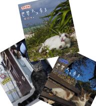 岩合光昭の世界ネコ歩き 第5弾 ブルーレイ 全3枚セット