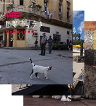 500円クーポン発行中!岩合光昭の世界ネコ歩き 第2弾 ブルーレイ 全3枚セット動物カメラマン・岩合光昭さんがかわいいネコたちをもとめて世界を歩きます。【楽ギフ_包装選択】