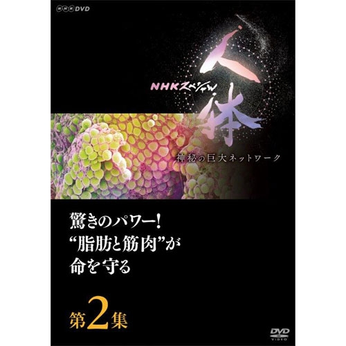 """神秘的な体の秘密を解き明かしていく知的エンターテインメント! DVD NHKスペシャル 人体 神秘の巨大ネットワーク 第2集 驚きのパワー!""""脂肪と筋肉""""が命を守る"""