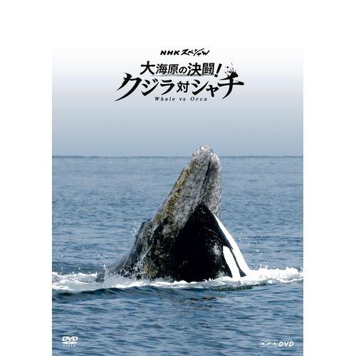 """送料無料地球最大級の生きもの クジラとシャチには知られざる闘いがあった (人気激安) 世界初""""地球最大の攻防戦""""を陸 海 空からの迫力映像でその全貌に迫る… 大海原の決闘 クジラ対シャチ お買い得品 DVD NHKスペシャル 地球最大級の生きものクジラとシャチには知られざる闘いがあった"""