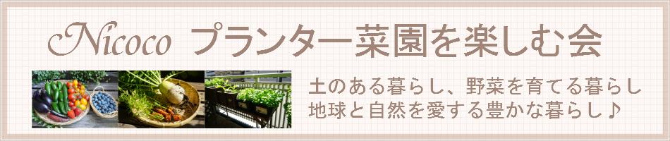 Nicoco プランター菜園を楽しむ会:土のある暮らし、野菜を育てる暮らし、地球と自然を愛する豊かな暮らし♪
