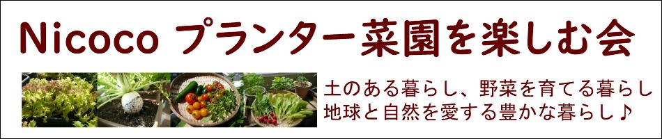 Nicoco プランター菜園EnjoyShop:植物を愛し地球に優しいオーガニックな暮らしを楽しむお店