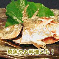 沖繩島 shikuwasa 泉森 zlzl 和 WAA!