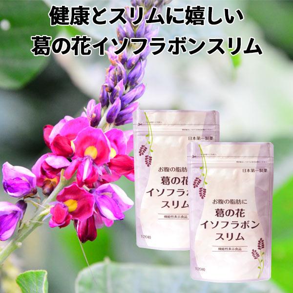 葛の花サプリメント お腹の脂肪に 葛の花イソフラボンスリム 30日分120粒入 2袋セット 機能性表示食品 葛の花 サプリメント ダイエット サプリメント サプリ ビタミンC ナイアシン ビタミンB6 ビタミンB2 ビタミンB1 送料無料