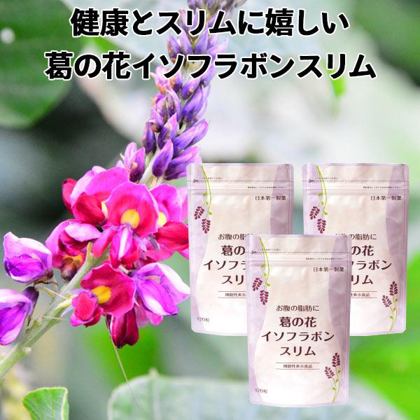 サプリ 葛の花 お腹の脂肪に 葛の花イソフラボンスリム 30日分120粒入 3袋セット 機能性表示食品 ダイエット サプリメント サプリ 葛の花イソフラボン 葛の花サプリメント ビタミンC ナイアシン ビタミンB6 ビタミンB2 ビタミンB1 送料無料