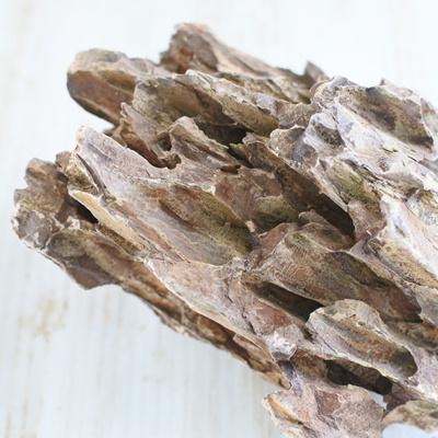 資 形おまかせ 気孔石 M 約13~22cm