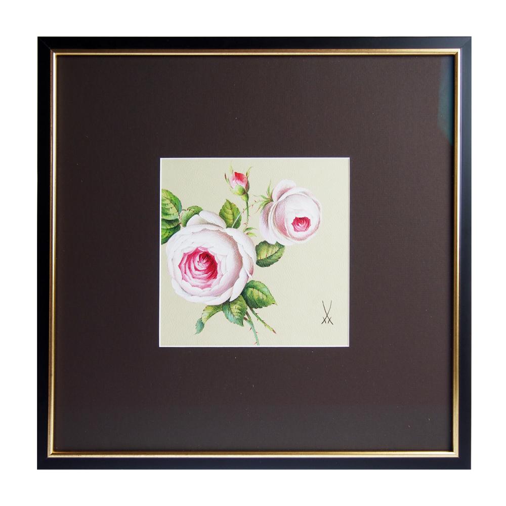 マイセン (Meissen) 陶画 No.628 レザーペインティング ホワイトローズ 25B005-LB006-1