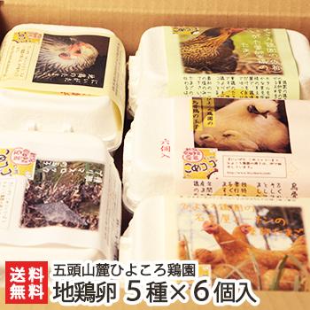 天然食物が卵の味に 人気地鶏の卵セット 食に敏感な方のために 一般配合飼料 ビタミン剤 人工添加物 抗生物質など一切使用しておりません 新潟産 地鶏卵の詰め合わせ 5種×6個入り シャモ にいがた地鶏 名古屋コーチン ウコッケイ 送料無料新品 卵各種類5個ずつ 種類毎の破損保証各1個 安売り 送料無料 ひよころ鶏園 横斑プリマスロック