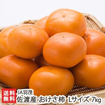 果樹栽培が盛んな南佐渡・羽茂地域で育った「まるは おけさ柿」!外見・味に優れた「赤秀」を厳選して産地直送!種なしで食べやすく、ビタミン・ポリフェノールが豊富です。 【予約限定】佐渡産 まるは おけさ柿 赤秀 Lサイズ 約7kg(36玉入り) JA羽茂【柿/かき/カキ/新潟産/果物/フルーツ/平核無/刀根早生/渋柿/ブランド柿】【送料無料】