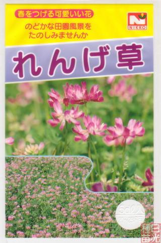 れんげ草の種子 10L【宅配便対応】