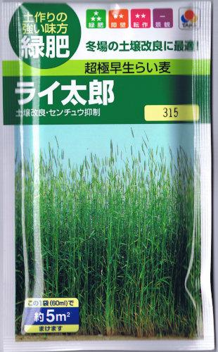 タキイ種苗 緑肥用ライムギ ライ太郎 60ml 【郵送対応】